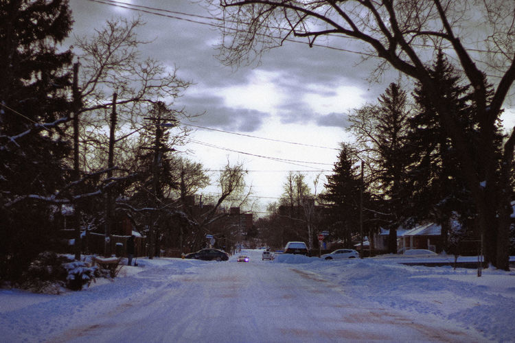 Winter, 2019 Tree Snow Winter Transportation Plant Cold Temperature Mode Of Transportation Car Motor Vehicle Nature Sky Road Cloud - Sky Architecture Land Vehicle City Street No People Direction Outdoors Electricity  Snowing Toronto Canada Wintertime