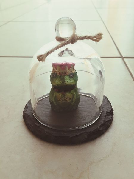 Frog in a Glassdome Glass Dome Glasscover Glass Cover Frosch Froschkönig Frog King Frogprince Frog Prince Frogking Lindt Lindtchocolate Chocolate Schokolade Iphonegraphy Hobbyphotography Hobbyfotograf