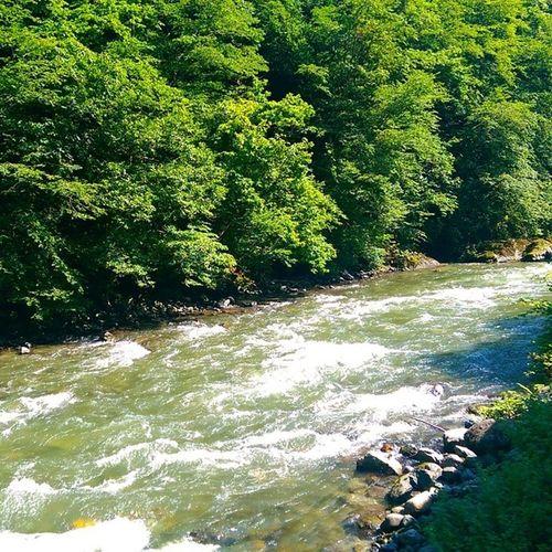 Firtına Dere Nehir Irmak river nature doga manzara water spring travel karadeniz camlihemsin ayder rize
