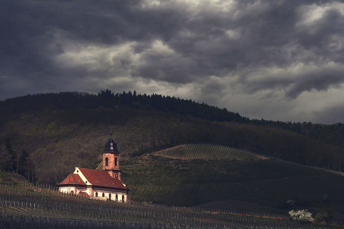 The Church Alsace Architecture Building Exterior Built Structure Church Cloud - Sky Cross Day Fance Mountain Nature No People Outdoors Place Of Worship Religion Sky Spirituality Storm Cloud Vineyard