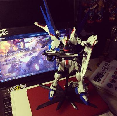 Freedom GundamO(≧▽≦)O Joy Enjoy Your Life