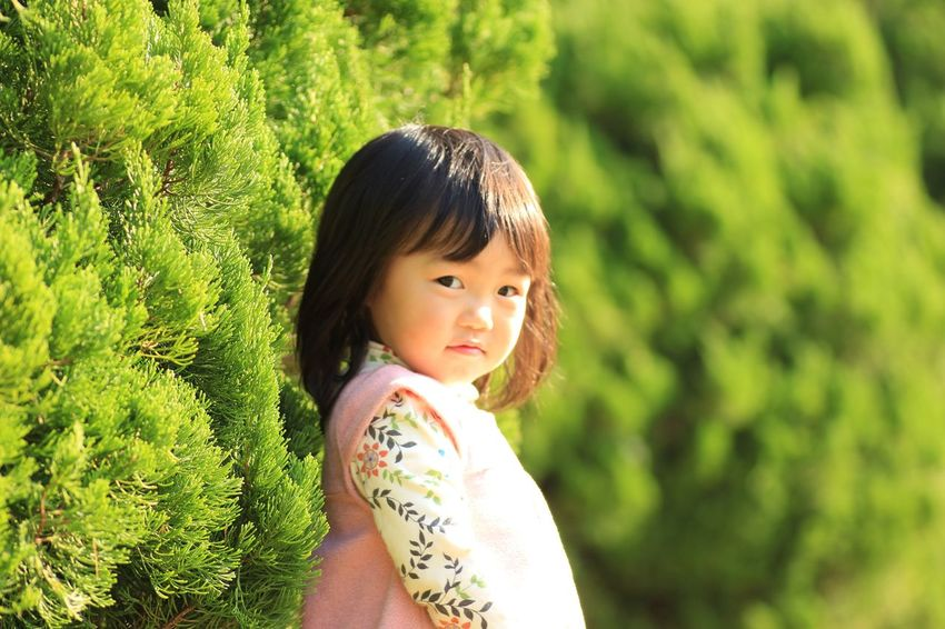 One Person Innocence Bangs Real People Girls Childhood One Girl Only Cute Outdoors Black Hair Portrait Green Color Standing Nature Day Grass Close-up People Daughter