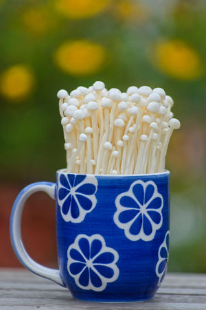 Freshness Growth Blue Ceramics Close-up Container Crockery Cup Drink Enoki Enoki Mushrooms Floral Pattern Focus On Foreground Food Food And Drink Freshness Mug Mushroom No People Pasta Plant Refreshment Selective Focus Still Life Table Tea Cup Wellbeing Wood - Material