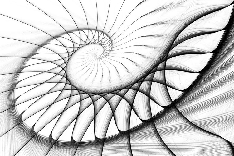 spiral staircase black on white. computer generated image Algorithm Architecture Backgrounds Black And White Close-up Concentric Concept Curve Dynamic Element Energy Fractals Graphic Imagination Nautilus No People Pattern Pattern Shell Space Spiral Staircase White