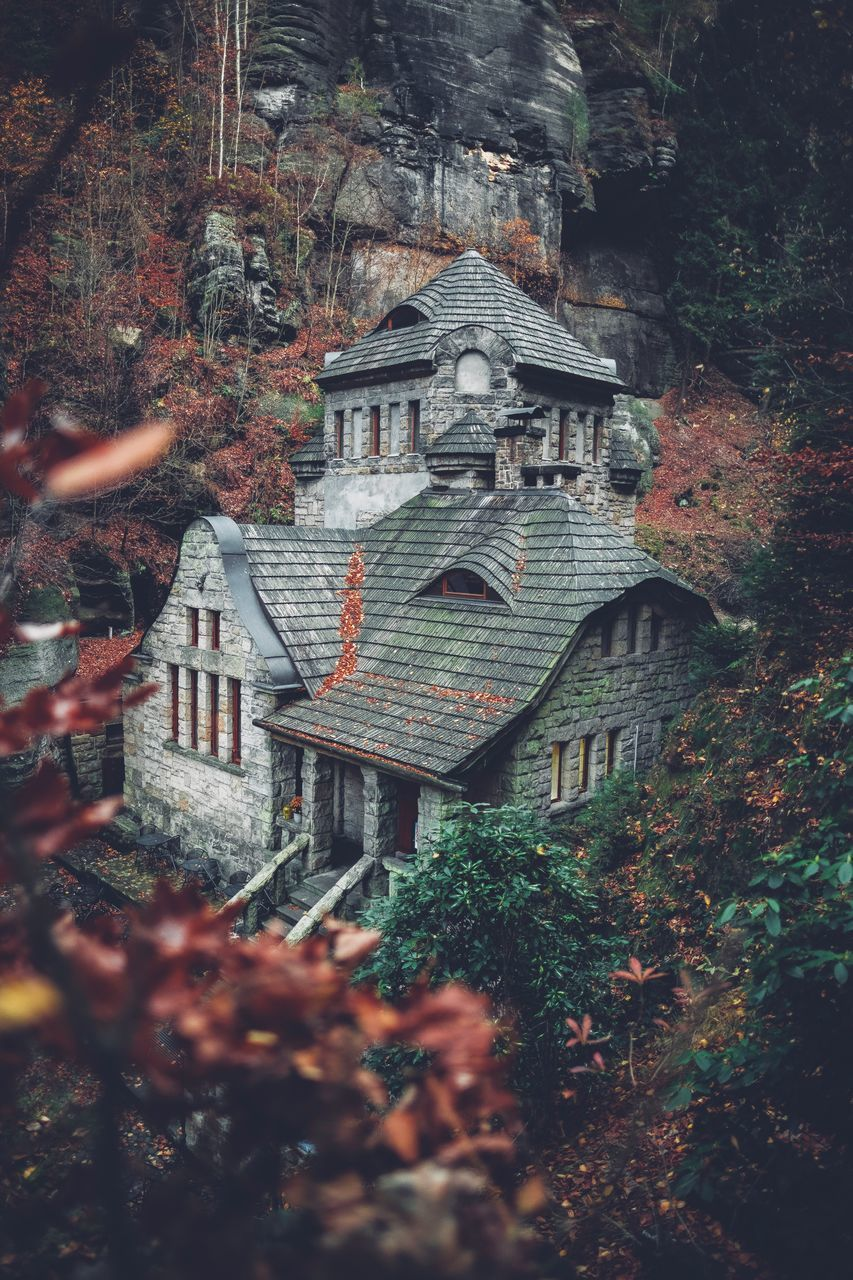 architecture, built structure, building exterior, building, tree, plant, nature, house, no people, day, land, belief, religion, autumn, place of worship, outdoors, forest, spirituality, residential district, small