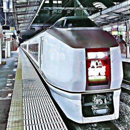 JR東日本651系電車 特急スワローあかぎ 火曜日のトレインスポッティング Trainspottingtuesday