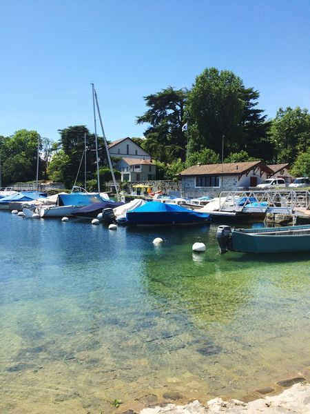 I am starting a new tag The Very Best Of Switzerland Coppet Sunny Sunny Day switzerland through my eyes Place To Be