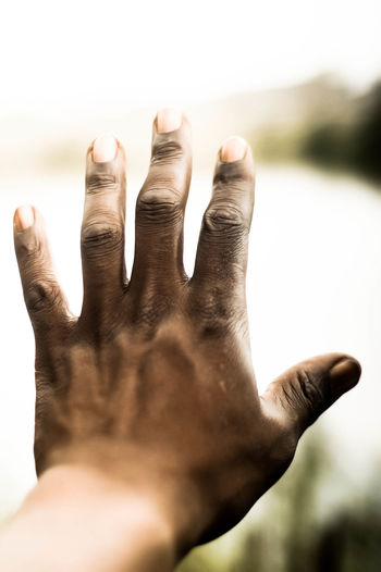 Cropped image of person hand
