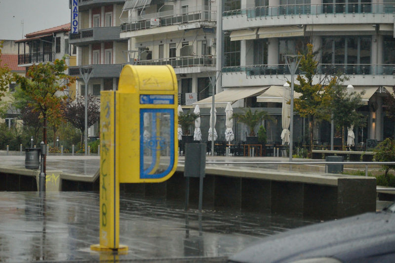 Nikon D3200 Paint The Town Yellow