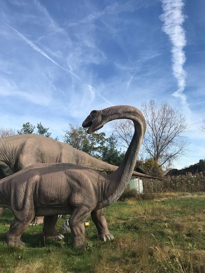Dinosaur Sky