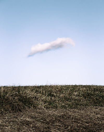 Calm Cloud Landscape Photography Nature Photography Agriculture Clear Sky Countryside Field Grass Landscape Landscape #Nature #photography Minimal Minimalism Minimalobsession Nature Nature_collection Naturelovers No People Outdoors Rural Landscape Rural Scene Sky Still Still Life Urban Escape Colour Your Horizn The Still Life Photographer - 2018 EyeEm Awards The Great Outdoors - 2018 EyeEm Awards The Creative - 2018 EyeEm Awards