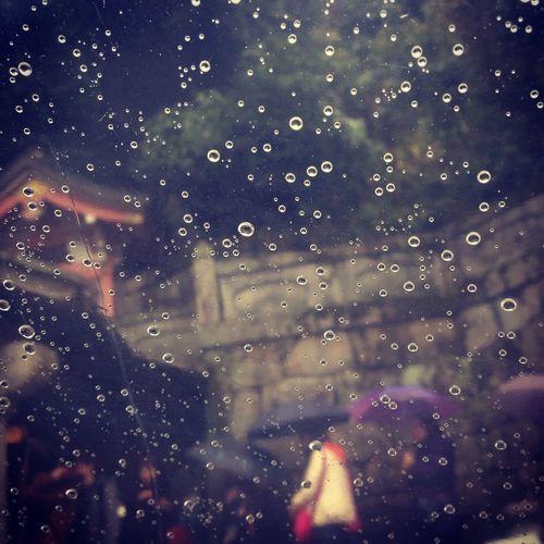 雨 Rain Fantasy 水滴 IPhone IPhone5