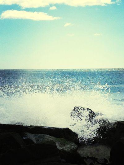 Enjoying The Sun Sea Being A Beach Bum Wave Catching