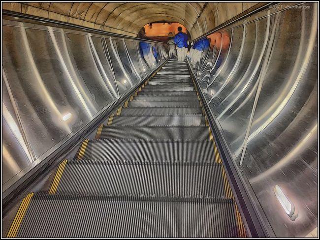 Seen in the Metro DC. 11817547