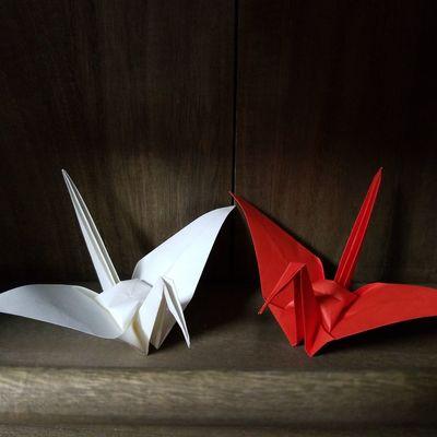 Folded paper crane Folded Paper Crane 折り鶴 Origamiart Origamicrane Origami Birds Origami Craft Origami Black Background Studio Shot Red Christmas Colored Background Close-up