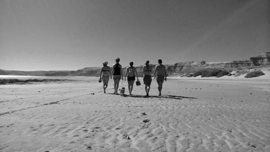 Rear view of friends walking beach against clear sky