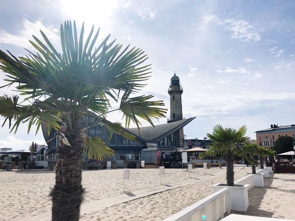 Lighthouse Teepott Sunbeam Promenade Palm IPhone X IPhone X Photography Warnemünde Beachphotography Baltic Sea Summer Summertime Beachphotography Sky Tree Cloud - Sky Built Structure Sunlight Tropical Climate Palm Tree Nature Building Exterior No People City Growth Outdoors Architecture Plant Beach