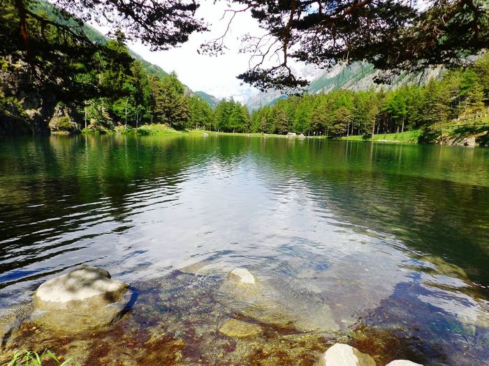 Alps Italy Italia Lake Lake View Nature Nature_collection EyeEm Nature Lover Taking Photos Intothewild