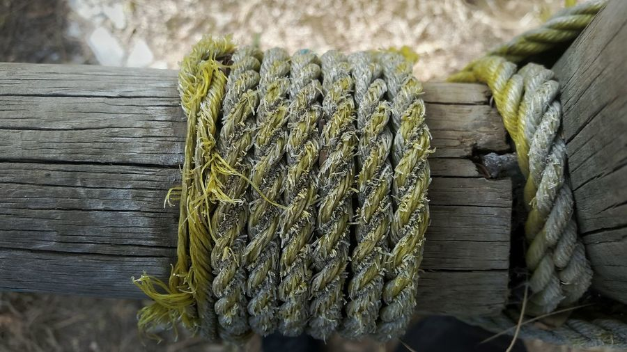 Wood - Material Wood High Angle View Green Color No People Nature Close-up Freshness Indoors  Day Rope Yellow Color Yellow