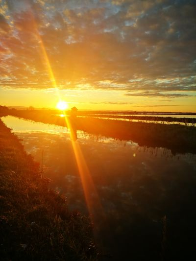 First Eyeem Photo Cervia Emiliaromagna_friends Italy Sunset Tranquility Salinedicervia Nature Is The Greatest Artist Beauty In Nature