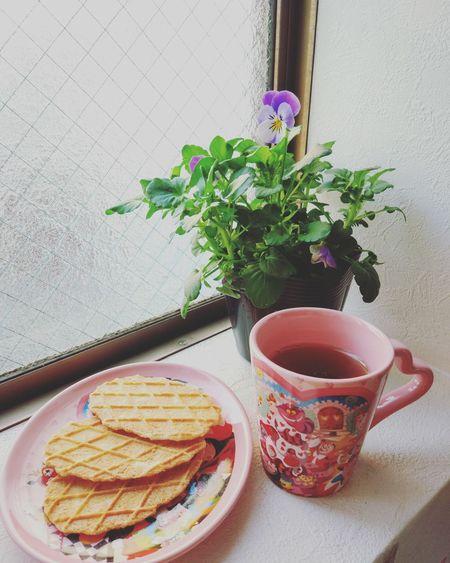 Relaxing Enjoying Life Food Sweets Desert Window Life RedTea Afternoon Tea Pink Flowers Green Home Lesure