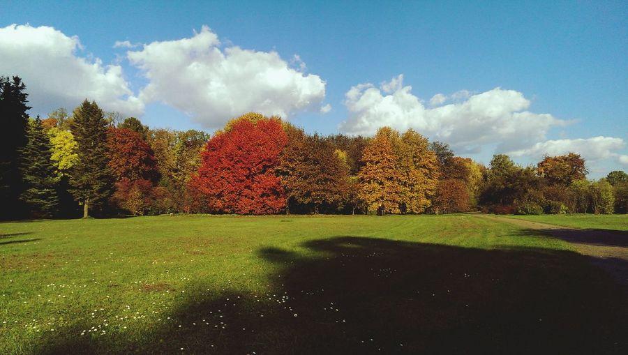 Autumn In Kaunas