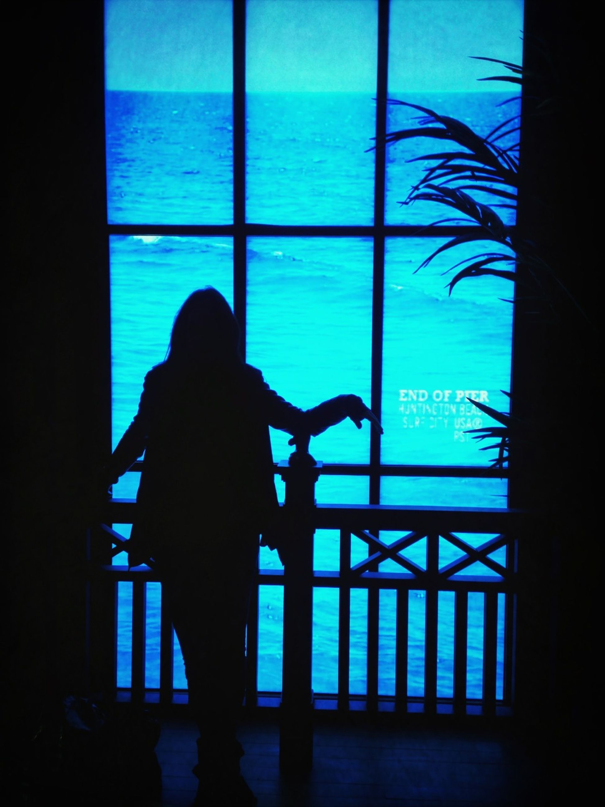 indoors, silhouette, window, lifestyles, leisure activity, men, standing, glass - material, rear view, sea, person, transparent, horizon over water, sitting, full length, shadow, sunlight