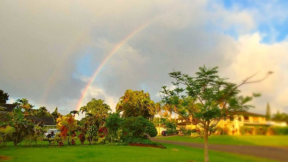 double vision kind of color No People Tree Spectrum Multi Colored Refraction Natural Phenomenon Rainbow Double Rainbow Weather Bubble Wand Sky Rainy Season Rain The Great Outdoors - 2018 EyeEm Awards The Street Photographer - 2018 EyeEm Awards The Traveler - 2018 EyeEm Awards The Creative - 2018 EyeEm Awards