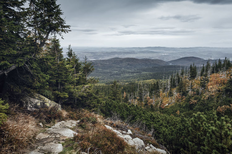 Scenic view of mountains during autumn at karkonosze national park