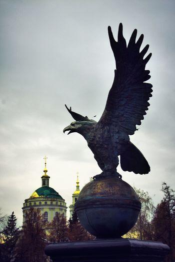 Statue Animal орел орел450 Russia россия No People Sculpture Bird Silhouette Architecture Animal Themes Outdoors