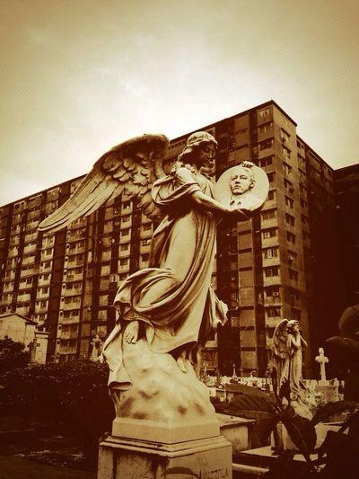 Angels of the ghetto Taking Photos Faith Freedom Streetart