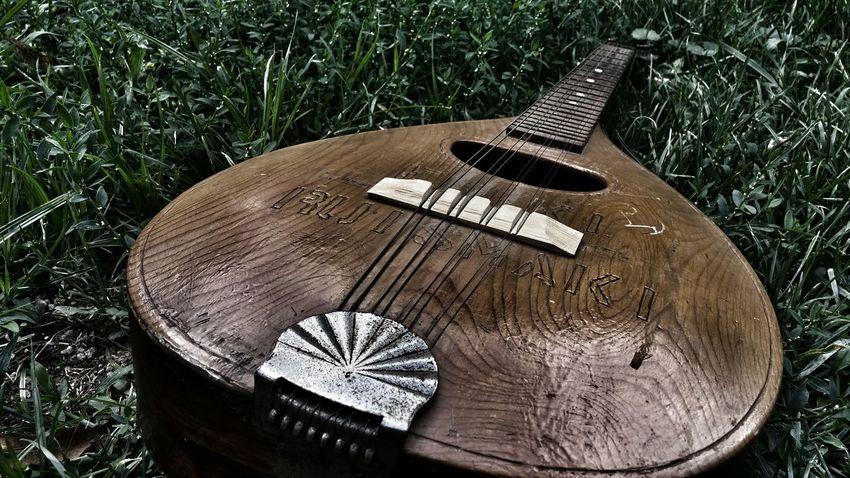 Rustic Mandolin Vibrations Instrument Mandolin Vintage Rustic Antique Mandolin