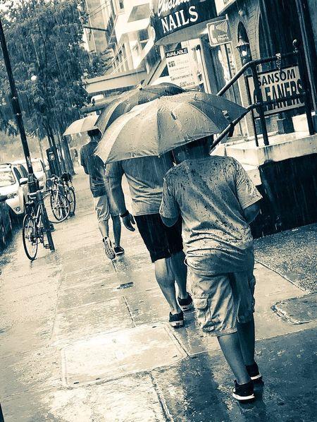City Street People Rainy Days Umbrellas Rain City Life Day