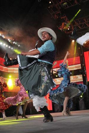 FESTIVAL NACIONAL E INTERNACIONAL DE FOLKLORE. Argentina Cosquin2016 Danza Folclorica Folklore Argentino