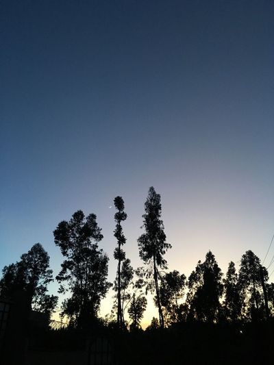 Night View Sky