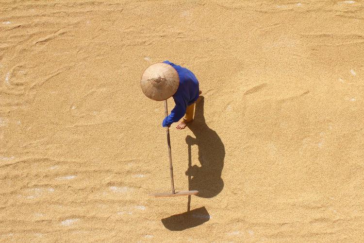 High Angle View Of Farmer With Work Tool On Grains