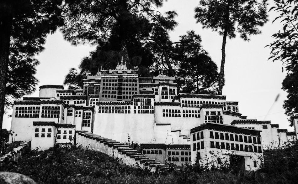 Little lhasa. Taking Photos Tibet Life India Exile Tribe Refugee Nikon_photography Art Black & White