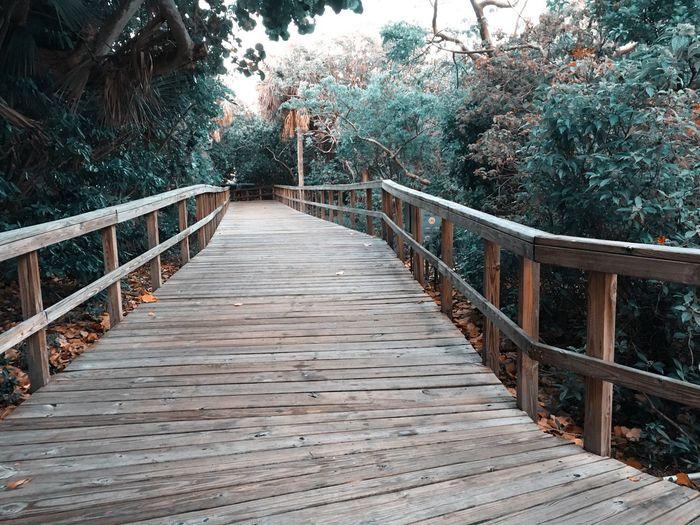 Footbridge amidst trees against sky