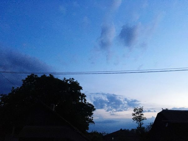 Night Sky Tree Cable Silhouette Nature Plant Cloud - Sky No People Low Angle View Electricity  Connection Dusk Power Line  Blue Scenics - Nature Beauty In Nature Outdoors Tranquil Scene Architecture Growth