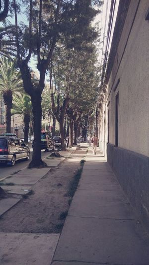 Ayacucho  Street