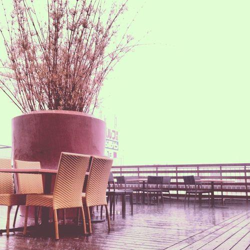 ゲリラ豪雨中。 ゲリラ豪雨 ゲリラ豪雨いやだね。