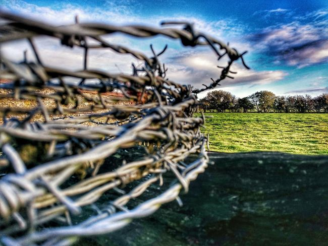 No People Outdoors Day Sky Field Agriculture Backgrounds Barbed Wire Barbedwireporn Barbed Wire Against The Sky Barbed Wire Photography