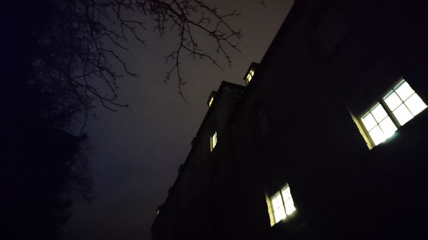 lumières du soir Night Low Angle View Architecture Illuminated No People Built Structure Building Exterior Tree Sky Outdoors