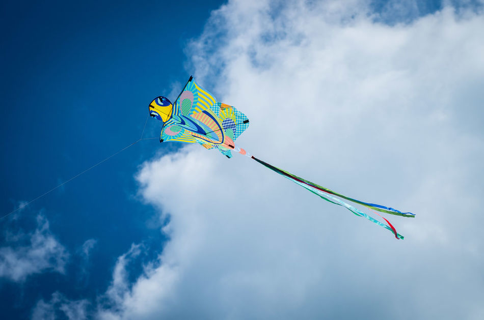 Blue Blue Sky Chilling Cloud - Sky Coast Coastline Day Flying Kite Kite Kite - Toy Kites Low Angle View Mid-air Multi Colored Outdoors Red Kite In Flight Sky Tranquility Wind