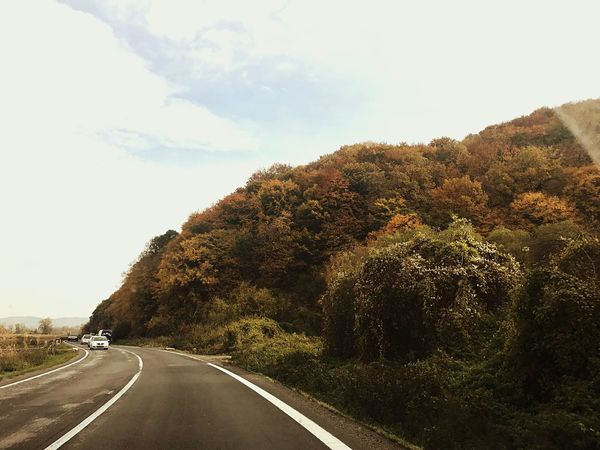 Beautiful colours of autumn. On the road again and again. Love Roadtrips Roads Car Driving