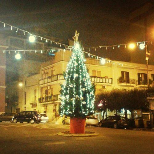 It's Chriatmas time ❤ Chriatmas Christmas Tree Christmas Lights Happiness