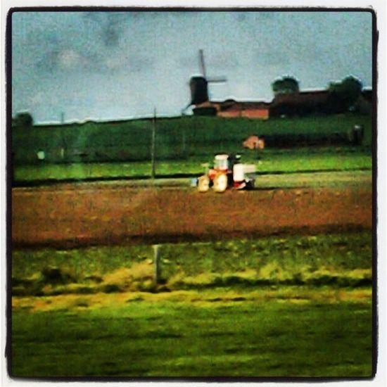 Windmill Farmer Boer Molen tielt