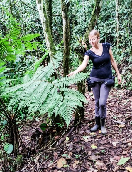 Protecting Where We Play Check This Out Taking Photos Tropics Woman Sunlight And Shadow Rainforest Tree Fern Mid-level Rain Forest A Walk In The Woods Linda Vista, CotoBrus, Costa Rica
