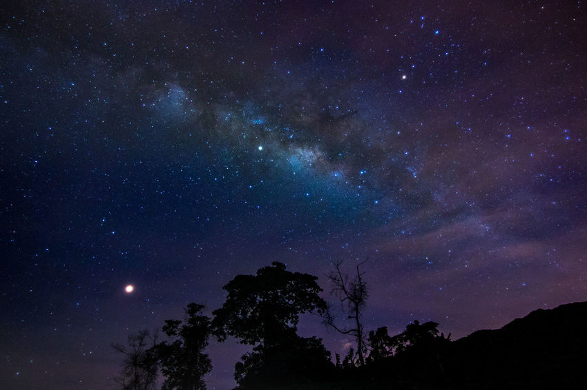 The photo of milkyway was shot at about 1am @ Cameron Highland, Malaysia EyeEm Best Pics EyeEm Best Shots Galaxy Astronomy Beauty In Nature Galaxy Infinity Low Angle View Milky Way Milkyway Milkyway,sky,star,landscape,night Milkywaygalaxy Nature Night Nightsky Popular Photos Scenics - Nature Silhouette Sky Space Star Star - Space Star Field Stars Tree