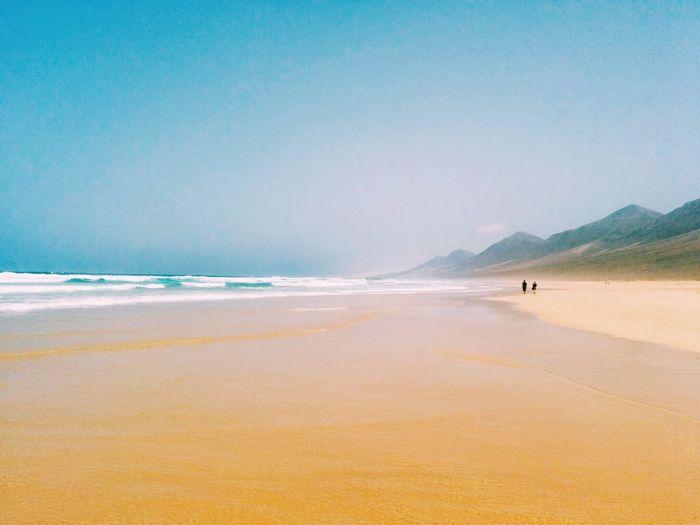 Two People Walking On Beach